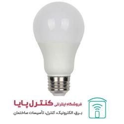 لامپ LED حبابی  مهتابی 20 وات